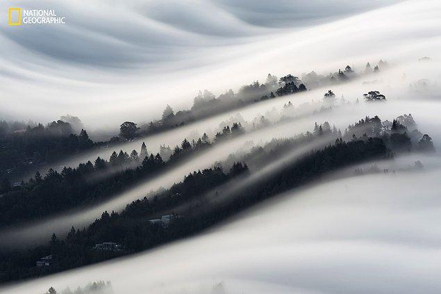 7. Mill Valley'deki sis dalgaları, Kaliforniya.