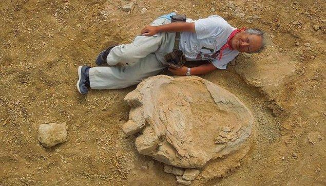 11. Şimdiye kadarki en büyük dinozor ayak izi keşfedildi.