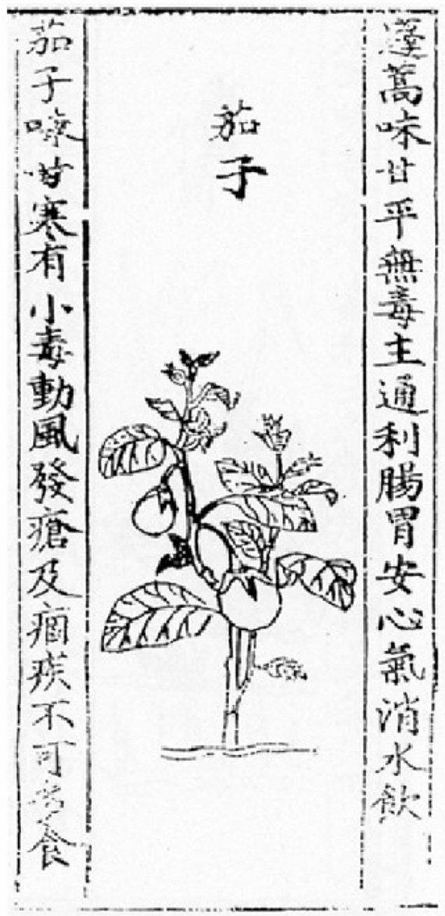 9. Yinshan Zhengyao