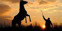 Böbrek Taşı Düşürmek İçin At Çalmış