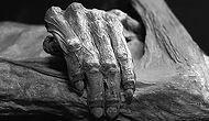Bilmemeniz Durumunda Bedelini Muhtemelen Ölerek Ödeyeceğiniz 13 Hayat Kurtarıcı Yöntem