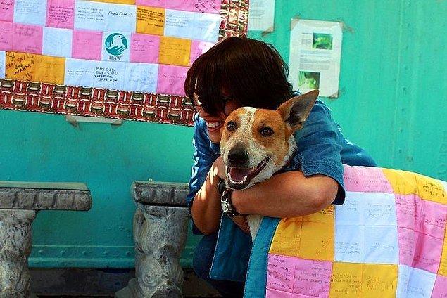 13. Havladığı İçin Diri Diri Gömülen Engelli Sokak Köpeği Lily'nin Hüzün ve Umut Dolu Hikâyesi