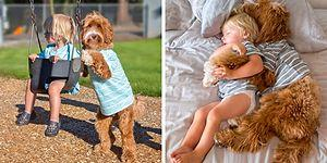 Bir Ailenin Sahiplendiği Köpek ve Evlat Edindiği Çocuk Arasındaki Gülümseten Dostluk Hikayesi