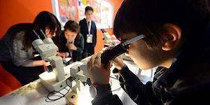 PISA Sonuçlarını Değerlendiren Milli Eğitim Bakanı Yılmaz: 'Eskiye Göre Çok Daha İyiyiz'