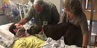 Köpekten Dostuna Yürek Burkan Veda