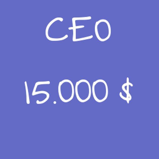 CEO - 15.000$!