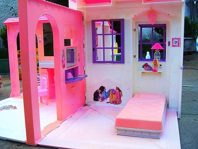 10. Barbie Evi