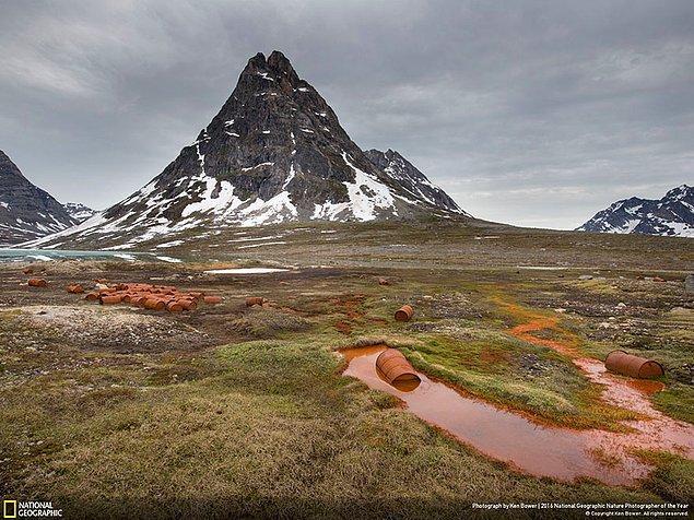 18. Çevresel sorunlar dalında şeref ödülü: Amerikan Çiçekleri, Grönland