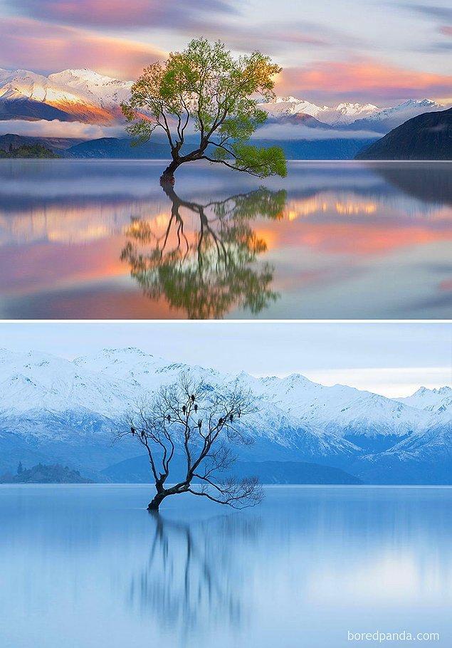 6. Wanaka Gölü, Yeni Zelanda