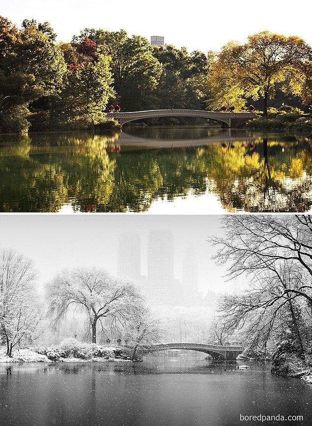17. Central Park, New York, ABD