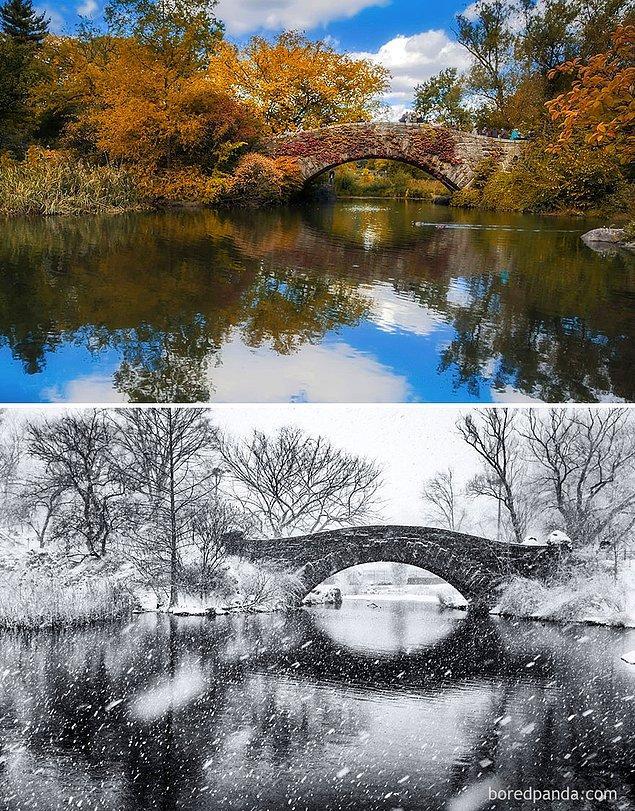 26. Central Park, New York, ABD