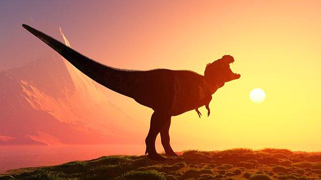 30. Dinozorların soyunun Dünya'ya çarpan bir meteor neticesinde değil, is ve duman yüzünden tükendiği düşünüldü.