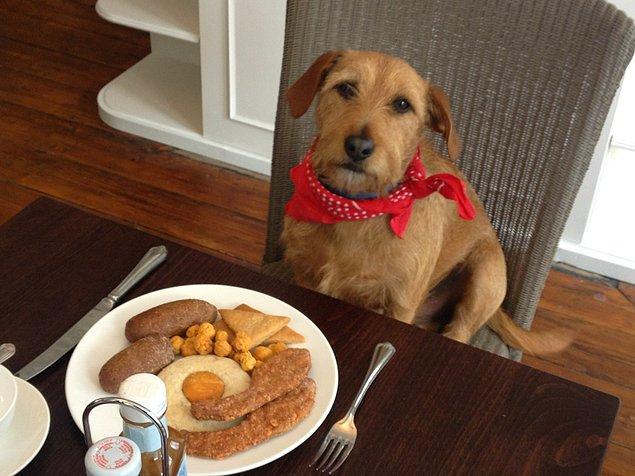 3. Kahvaltıda ne yediğiniz önemli