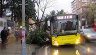 Ağaçlar Devrildi, Çatılar Uçtu, Elektrikler Kesildi: İstanbul Fırtınaya Teslim