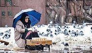 Kar Kış Demeden Parkta Kuş Yemi Satarak Geçimini Sağlayan 81 Yaşındaki Nezegül Nine