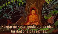 Zen Budizmi'nden Yaşamın Ustası Olma Yolunda Ruhunuza Işık Tutacak 19 Öğreti