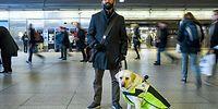 Görme Engelli Adama Kılavuzluk Eden Köpeğin Gün İçinde Karşılaştığı Zorluklar