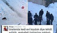 Güzelliğe Düşmanlar: Üsküdar'da Sokağa 'Kedi Evi' Bırakanlara Saldırı