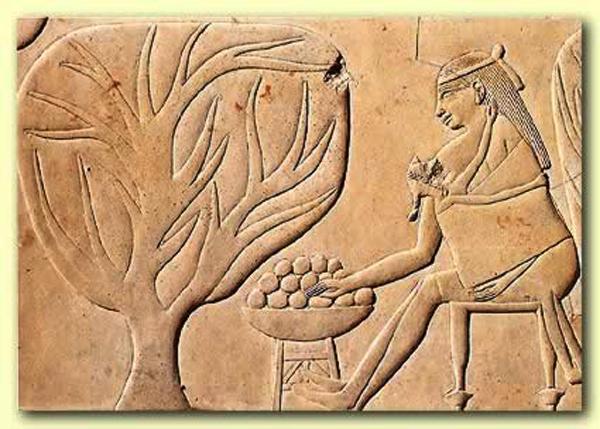 Antik Mısır'da Gebelik ve Doğum Kontrolü Hakkında Bilmeniz Gereken Çok Enteresan Bilgiler 41