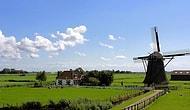Tarımın Küçük Dev Ülkesi: 15 Maddede Hollanda'nın Tarımsal Başarısının Sırrını Açıklıyoruz!