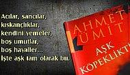 """Ahmet Ümit'in """"Aşk Köpekliktir"""" Romanından Hayata Dair 15 Muhteşem Alıntı"""