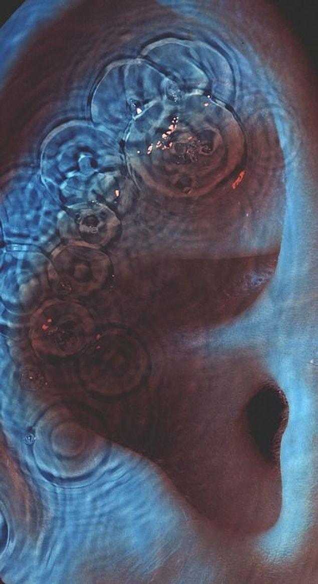 Neticede kapak yakın çekim uzmanı olan Robert Dowling'in çektiği renklendirilmiş insan kulağının üstünde üzerinde yayılan su halkalarının görüntüsünden meydana geldi.