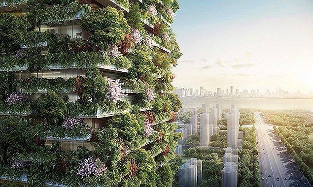 Nanjing Towers adı verilen bu ormandan binalar, 2018 yılında tamamlanacak ve Asya'nın ilk dikey ormanları olacak.