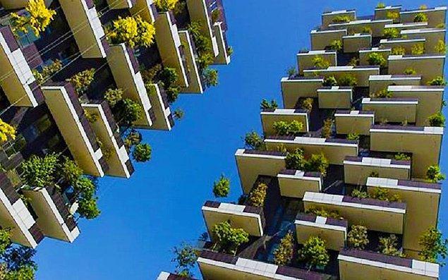 Kuleler toplamda 23 farklı yerel cinsten 1000 ağaç ve 2500 fundayı üzerinde yaşatacak.