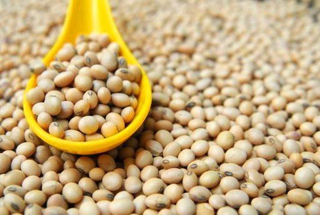 15. Soya ürünleri