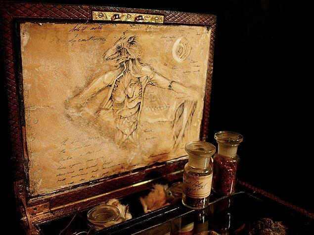10. Kurtadamların anatomisine dair ilginç bir çizim