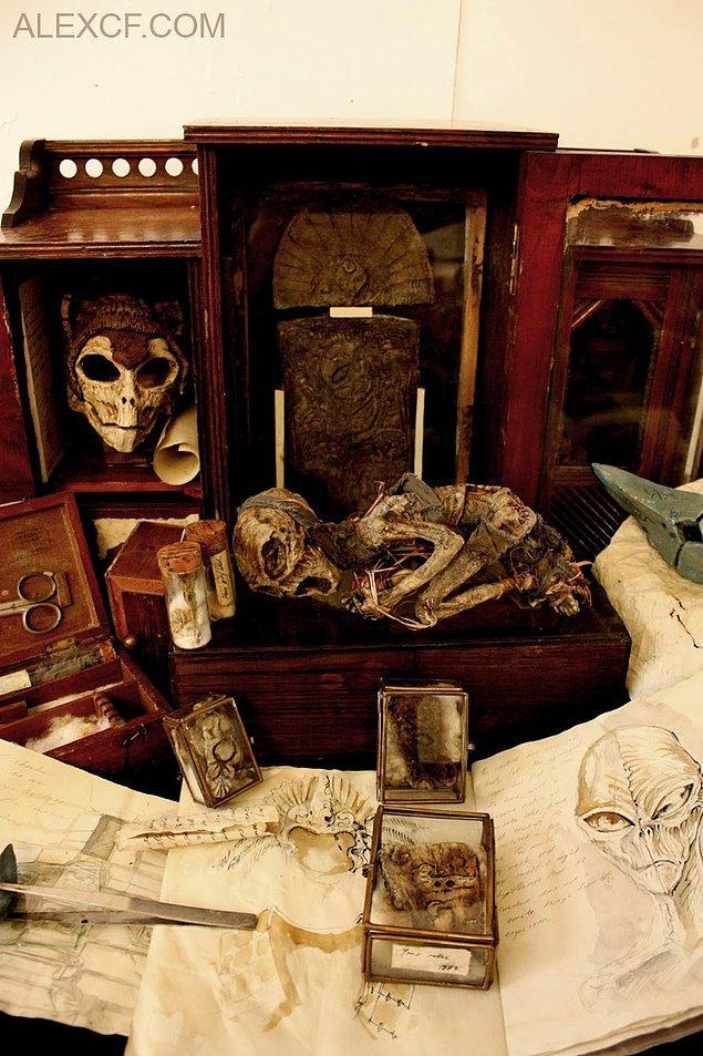 15. Mayanlara ait anatomik çizimler ve kalıntılar