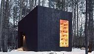 New York Ormanlarının Arasında, Kitap Kurtlarının Bayılacağı Muhteşem Kulübe Kütüphane!