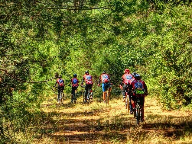 31. Aşktır bisiklet, sevdadır doğa, soluktur rüzgar. Eksik etme bunları hiçbir zaman yaşamından.