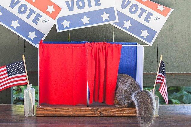 Hatta Amerika'nın başkanlık seçimleri için oy bile kullanabiliyorlar.