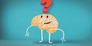 Bugüne Kadar Beyninin Yüzde Kaçını Kullandığını Söylüyoruz!