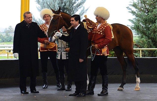 6. Atlar özel ilgi alanı.