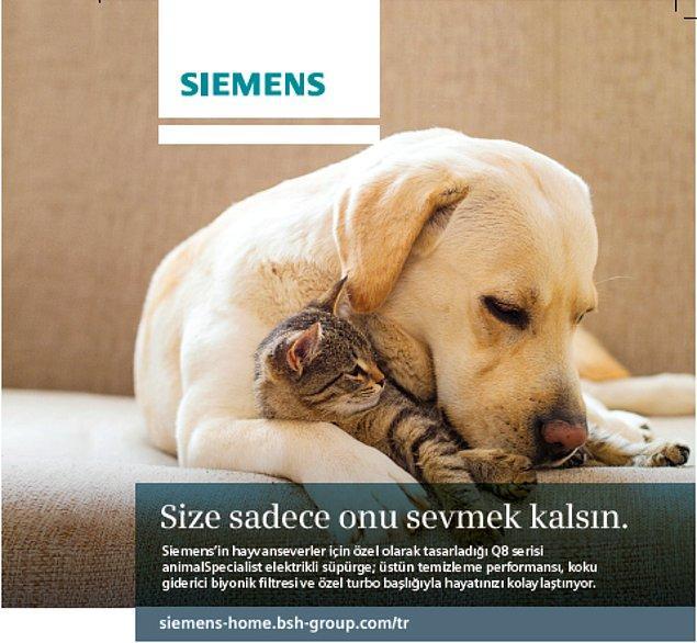 Siemens VSQ8 PET 1 Pet Special siz evcil hayvan dostları için özel olarak üretildi. Size sadece onu sevmek kalsın!