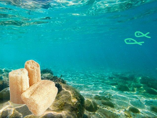 Peki bu liflerin denizden gelip banyolarımızda yer aldığını daha önce düşünmüş müydünüz? Soruyoruz çünkü biz düşünmüştük.