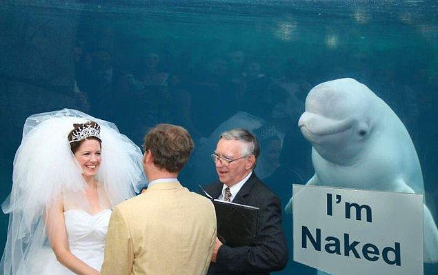 1. Klasik düğün trollemesi