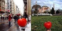 Her Yeri Kendi Başına Gezen Domates Görmediyseniz Tanıştıralım: Şehir Domatesi