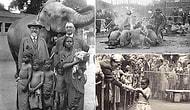 Kuşkusuz 20. Yüzyılın En Korkunç Uygulamalarından Biri: İnsan Hayvanat Bahçeleri!