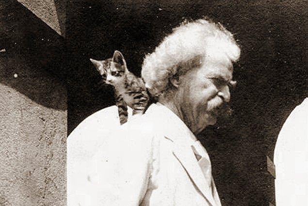 """""""Her yerde kediler var. Yanlarından Sultan geçse dahi yerlerinden kımıldamayacak gibi yatıyorlar."""""""