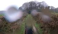 Emekliye Ayrıldığını Unutan Yarış Atından Üstündeki Adamı Düşüren Efsane Koşu
