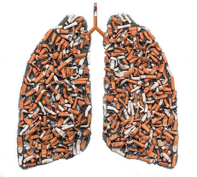 7. Sigara kullanımının kanserle ilişkilendirilmesi (1950-1960'lar)
