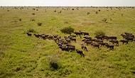 Drone Görüntüleriyle Güney Afrika'nın Eşsiz Doğal Güzelliği