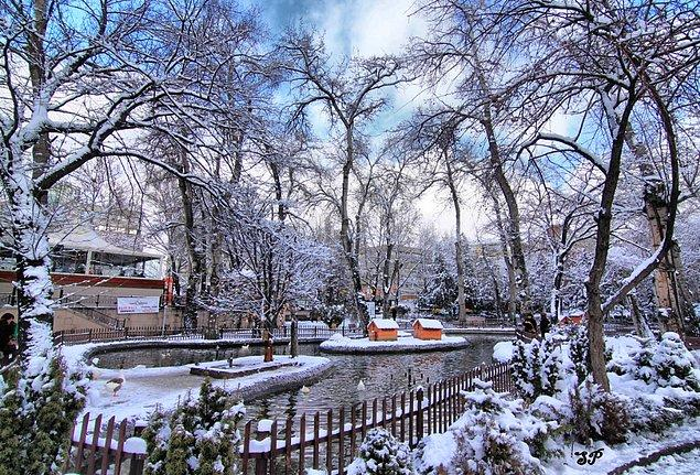 17. Ankara'nın en huzurlu yeri: Kuğulu Park