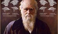 Charles Darwin ve Evrim Teorisi Hakkında Yanlış Bildiklerinizi Öğrenince Çok Şaşıracaksınız!