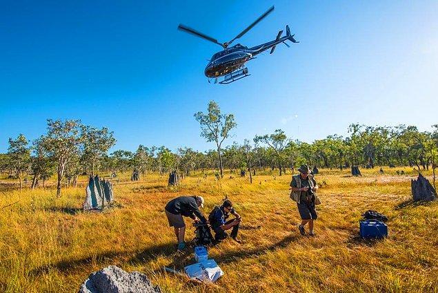 Bu araştırma, Bush Blitz adı verilen keşfin bir parçası ve Avustralya hükumeti tarafından destekleniyor. Başladığından beri yapılan 34 keşifte 1200'e yakın yeni tür keşfedildi.