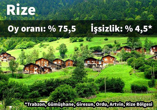 2. Rize