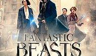 Fantastik Canavarlar kadrosu gittikçe genişliyor! Sonraki filmde rol alacak bir oyuncu daha belli oldu gibi!